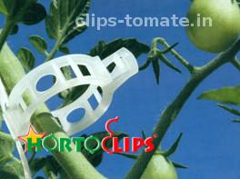 clip-de-facil-colocacion-para-el-tutoreo-de-tomate-hortoclips